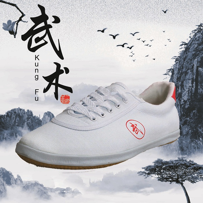 NEW! Tai Chi Kungfu Wushu training shose high quality canvas for adult children 3 colors ...