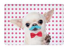 Floor Mat Pink Dot cute Chihuahua Moustache Bow Tie Print Non-slip Rugs Carpets alfombra For Indoor Outdoor living kids room