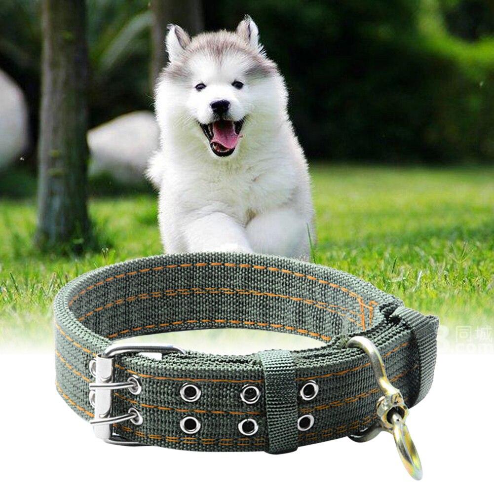 acquista all'ingrosso online collari per cani di grossa taglia da