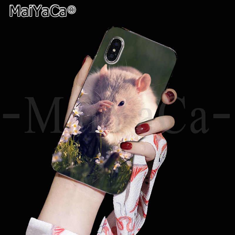 MaiYaCa Animal Bonito Rato Comer comida linda Acessórios Do Telefone Caso para Apple iPhone 8 7 6 6S Plus X XS max 5 5S SE XR