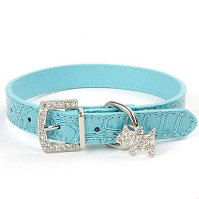 Dog Collar Fashion 2