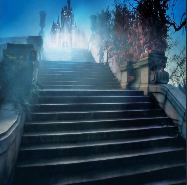 8x8ft Cinderella Princess Castle Steps Night Time Custom