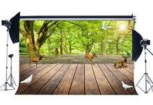 Fondo de primavera bosque selva fondos árboles verdes paloma Sika ciervo rayas rústicas suelo de madera fondo de fotografía