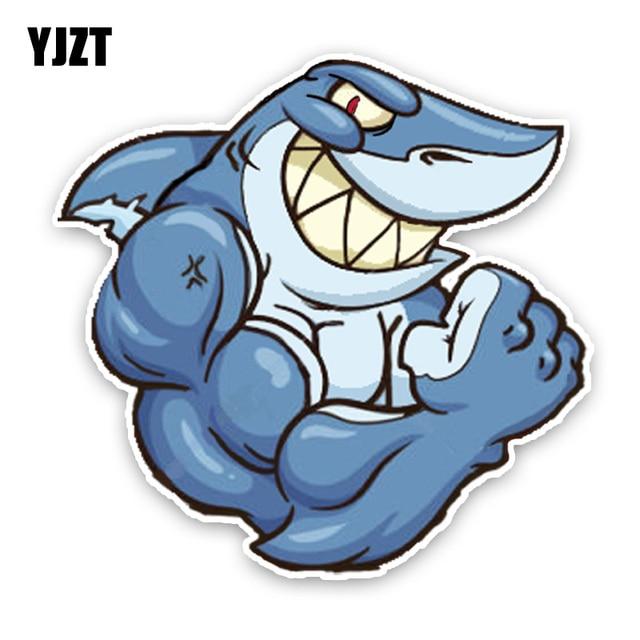 Shark Muscles