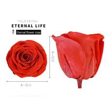 8/Box Eternal Roses Durable Preservation Quality Flower Heads ValentineS Day Christmas Birthday Gift 29 Colors