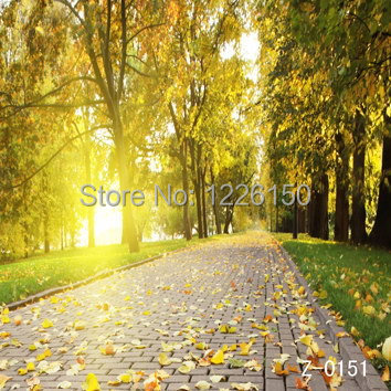 Free Digital scenic sunshine Backdrop E2189,10*10ft vinyl photography,photo studio wedding background backdrop,fondos fotografia free scenic spring photo backdrop 1883 5 10ft vinyl photography fondos fotografia photo studio wedding background backdrop