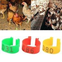 100 шт куриные ноги птицы утка гусь кольца группа ноги клип кольца внутренний диаметр 16 мм товары для фермы техника