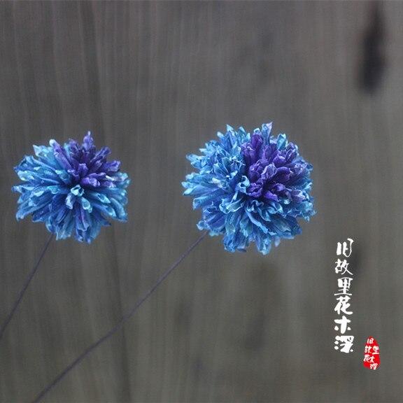 Bleu Planete Litterature Petit Frais Decoration De La Maison Art