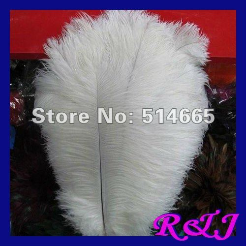 EMS Free shipping Cheap ostrich feather 100pcs 18-20 inches 45-50cm white Ostrich plumage ostrich plume