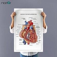 Картина на холсте без рамы, сердце, анатомия, художественный плакат, Настенная картина, образование, печать на холсте, художественный декор стен