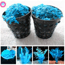 Buy Diy Aquarium Background And Get Free Shipping On Aliexpress Com