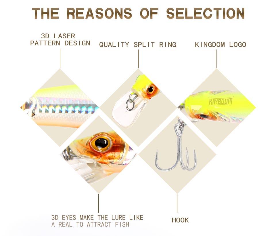 Kingdom fishing lure minnow floating 100mm 20.7g,120mm 30g fishing wobblers lifelike fishing lure Artificial Bait model 5501 (2)