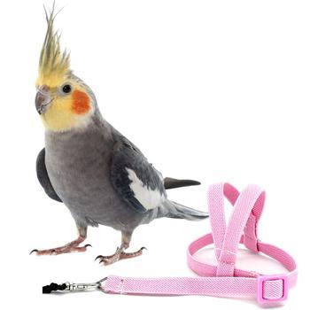 Heißer Verkauf Anti-biss Fliegen Ausbildung Seil Papagei Vogel Pet Leine Kits Ultraleicht Harness Leine Weiche Tragbare Pet Spielzeug