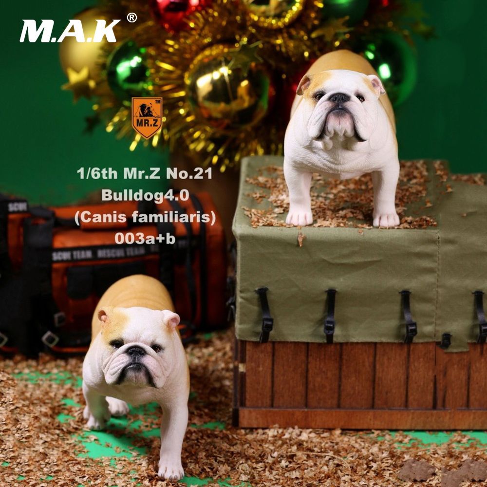 Collectible Figure Accessory 2pcs/set 1/6 Mr.Z NO.021 English Bulldog 4.0 Figure Canis Familiaris Animal Model Toy for Fans Gift цена