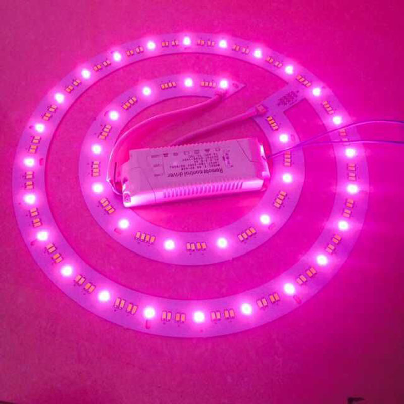Lighting Accessories Kinlams 36w Led Rgb+cw+ww Colorfully Round Shape Led Modules For Ceiling Light Intelligent Remote Control Energy Saving Lamp Handsome Appearance Lights & Lighting