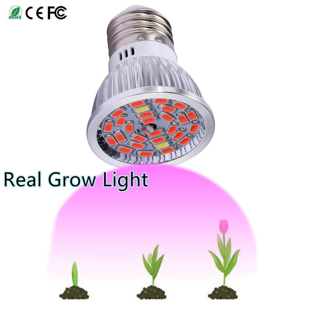 Levou Crescer Luzes espectro completo levou cresce a Características : Spotlight