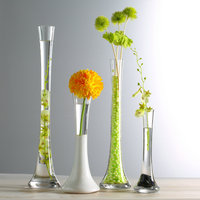 GIEMZA Large Floor Vases Tall 1pc High Glass Vase for Home Decor Thin Single Flower Bottle No Dried Plant on Floor Decoration