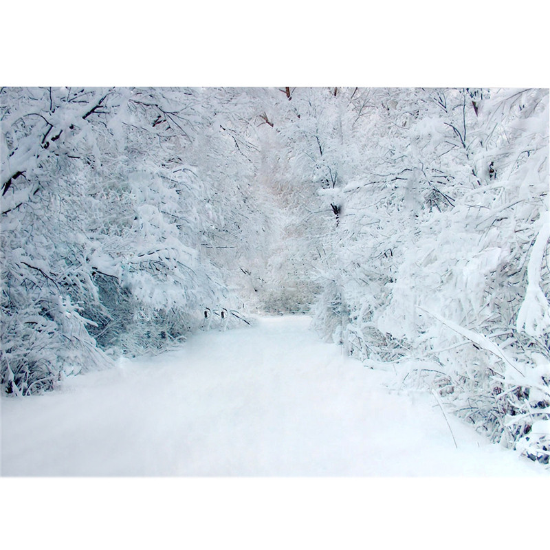 1.5x0.9m snowscape Vinyl Photography Backdrops For Studio Photo Props Snow Road Photographic Background Cloth 0.9x 1.5m shengyongbao 300cm 200cm vinyl custom photography backdrops brick wall theme photo studio props photography background brw 12