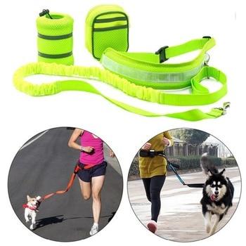 Photo : Ensemble disponibles du kit main libre jaune fluo pour chien