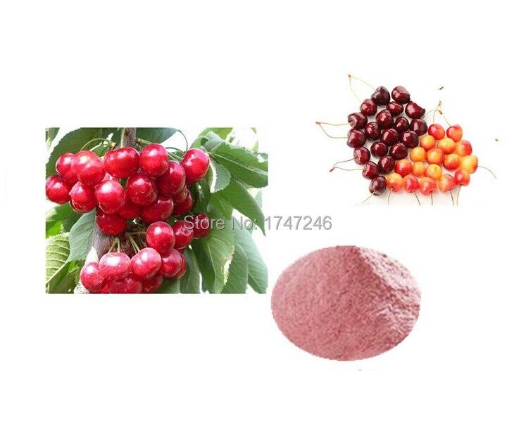 Top Quality cherry powder extract 1kg Free Shipping термокружка biostal nm 105 a