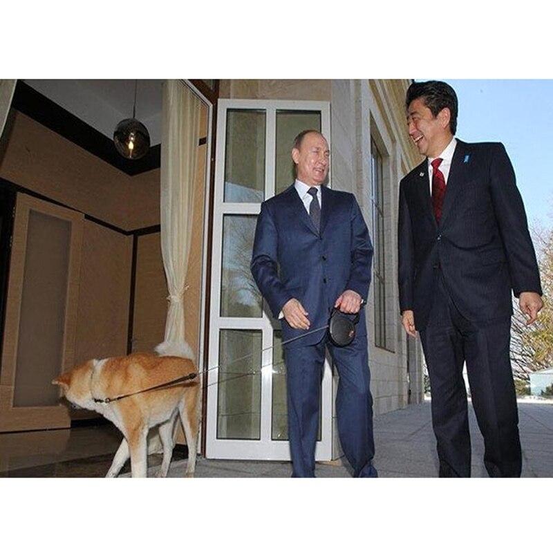 Hoge Kwaliteit Pet Klik Knop Controle Automatische Telescopische Trekkabel Automatische Lopen De Hond Touw Outdoor Trein Rope Leads