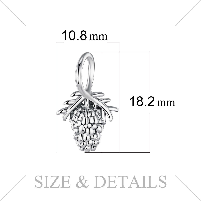 JewelryPalace אצטרובל 925 סטרלינג כסף חרוזים קסמי כסף 925 מקורי עבור צמיד כסף 925 מקורי תכשיטי ביצוע ילדה