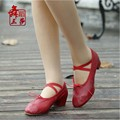 Ballet Soft Leather Brand Shoes Women Cross Strap Ballet Shoes Solid Color Dance Plain Pu Puppy Heel Instep Womans Shoes