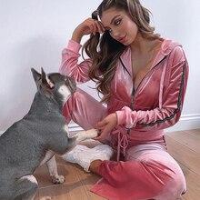 Fashion Pink Velvet Two Piece Set Women Velour Tracksuit Long Sleeve Zip Hoodie And Pants Matching Ladies Sportswear
