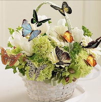2017 The Latest DIY 5D Full Diamond Painting Butterfly Flower Basket Home Decorative Patterns Diamonds Embroidery