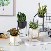 Set of 3pcs Modern Flowerpots Succulent Plant Pot with Black Golden Iron Shelf Home Decor Planter Garden Pot
