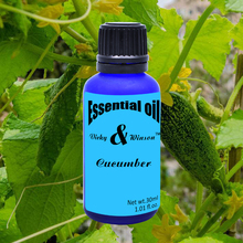 Vicky&winson Cucumber aromatherapy essential oils 30ml anti wrinkle and enhance skin elasticity replenishment VWXX14