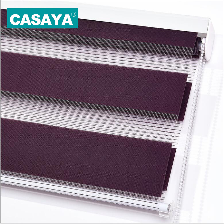 CASAYA 100 Polyester Roller Shades Window Covering Sheer or Privacy Double Layer Zebra Blinds Living Room