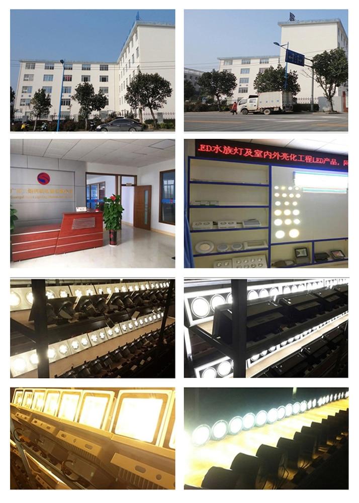 company information2