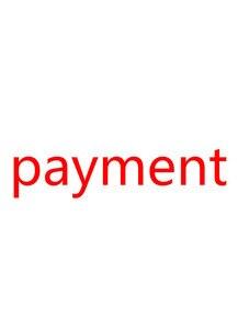 Image 1 - 무료 배송 2019 버전 r4isdhc 새로운 r4 tf sd 카드 어댑터에 대한 지불 목록 골드 프로 화이트와 실버