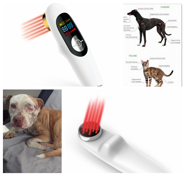 Small size arthritis therapy pet laser therapy device for home small size sprain therapy light therapy for pain management home remedy