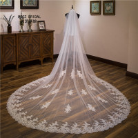 2019 Lace Wedding Veil 2 Tiers Blusher Cover Face Cathedral High Quality Real Photos Veu de Noiva with Comb Wedding Accessories
