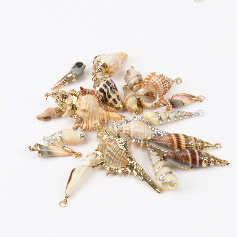 Random Mix Natural Spiral Shell Gold Plated SeaShells For DIY Handmade Home Decoration Jewelry Making 5pcs