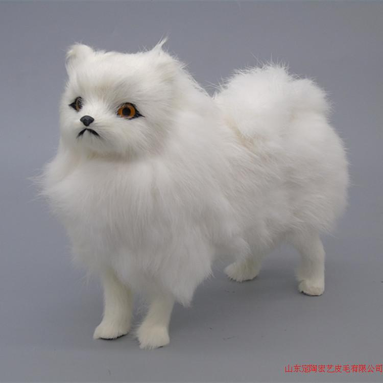 white pomeranian puppies price popular pomeranian white buy cheap pomeranian white lots 2254