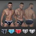 5 Colors Fashion mens New Underwear Fashion Sexy Racer Stamp Breifs Cotton Shorts Stripes N1229