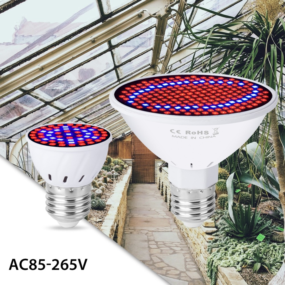 E27 Grow Light LED Indoor Full Spectrum LED Plant Lamp 48 60 80 126 200leds Hydroponics Phyto Lamp Growing Bulb 220V Fitolamp