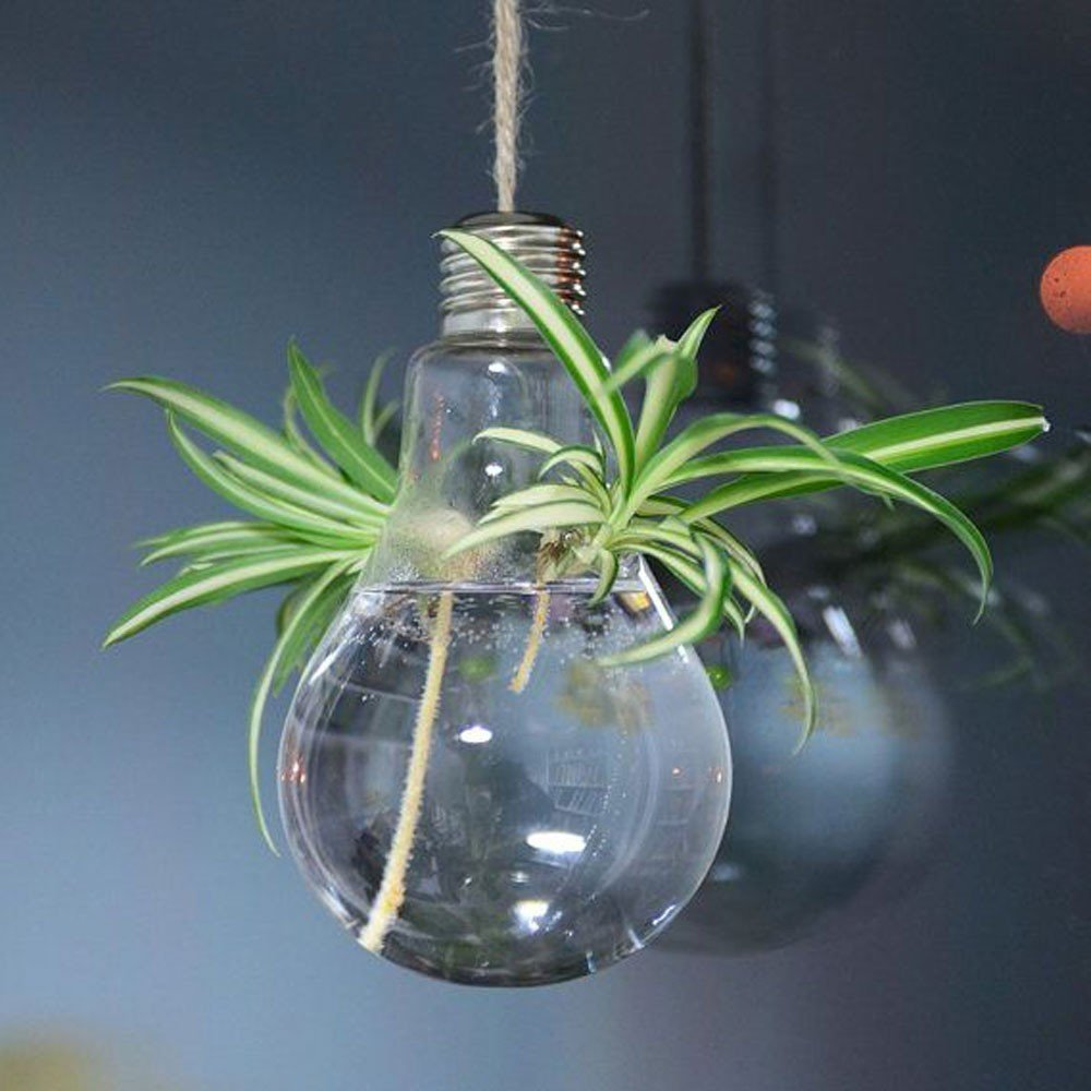 1 piece light bulb glass terrarium hanging air plant bulb for Home ornaments
