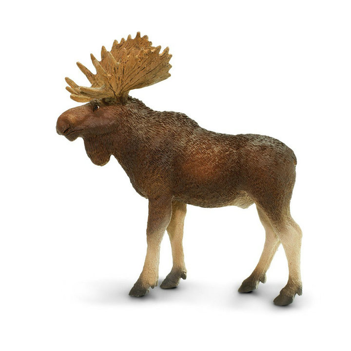 Educational-Figure-Toy Moose-Figure Animal-North Collectible Kids Gift Wild Life-Farm