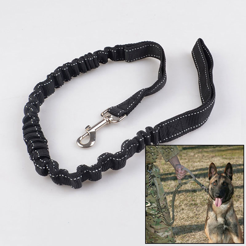 Dog Harness Pet Dog Leash Elastic Rope Strap Walking Safety Lead Puppy Lead Security Dog Collar Leash Training Pet Supplies
