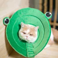 @HE Frog Elizabeth Cat Dog Collar New Dog Pet Protective Collar Anti-grab Bite Anti-skull Fitting Pet Medical Supplies