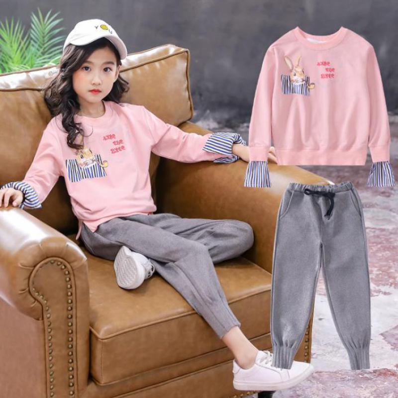 2019 Toddler Girls Clothing Sets Spring Children Tracksuit Long Sleeve Sweatshirt + Pants Kids 2 Pcs Girls Cotton Hooded Suit 12