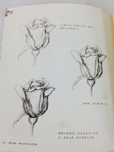 Image 5 - Libro de pintura de dibujo de línea china: Technigues de dibujo para 87 flores famosas lápiz blanco negro boceto libro de dibujo