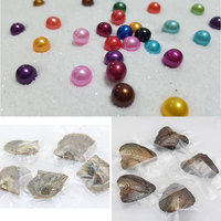 Tray of 10 Oysters with Single Round Pearls Rainbow Akoya Round Pearls (5pcs Saltwater Oyster and 5pcs Freshwater Oyster) PJW267