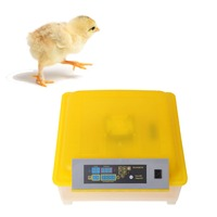 GE FHQ HHD 48 220V LED Display Clear 48 Egg Brooder Incubator Turner Digital Temperature Control
