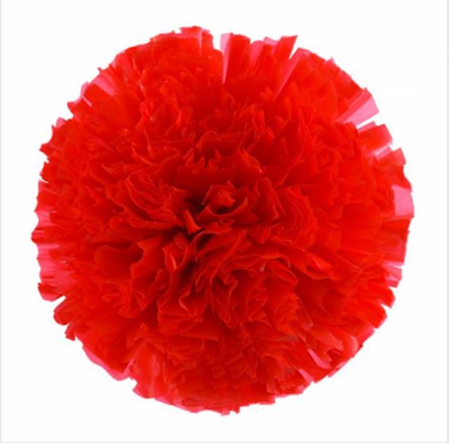 Red Small cheer pom poms 5c64fbbde3f95