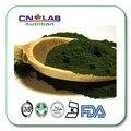 Venda quente vegetal puro extrato de Spirulina Em Pó 200g